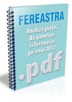 Analiza pietei de paneluri si feronerie pe anul 2012