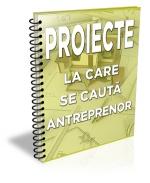 Lista cu 33 de proiecte la care se cauta antreprenor (august 2013)